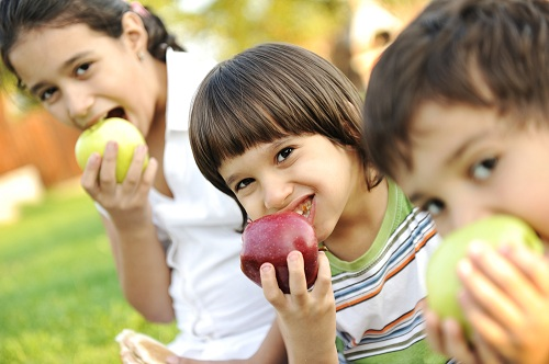 Four tips for healthy eating toddlers