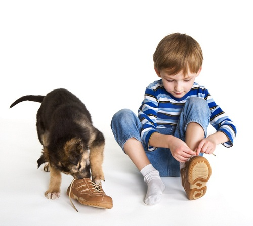 How to teach a child to tie shoelaces